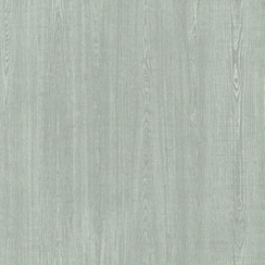 EXPONA - White saw cut ash 5991
