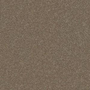 New Sunrise-550-Clay