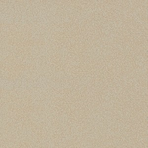 carpet-natural trends-sand dune-swatch-godfrey hirst carpet