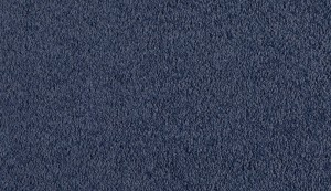 carpet-pacific view-blue belle-floor-godfrey hirst