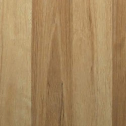 Titan Select - 8mm Coastal Blackbutt