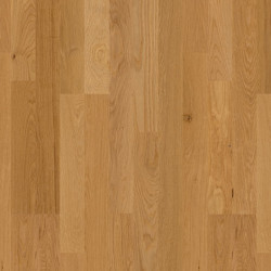 White Oak 2 Strip
